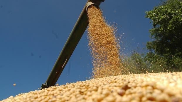 La soja se volvió a cotizar a 3700 pesos en Rosario