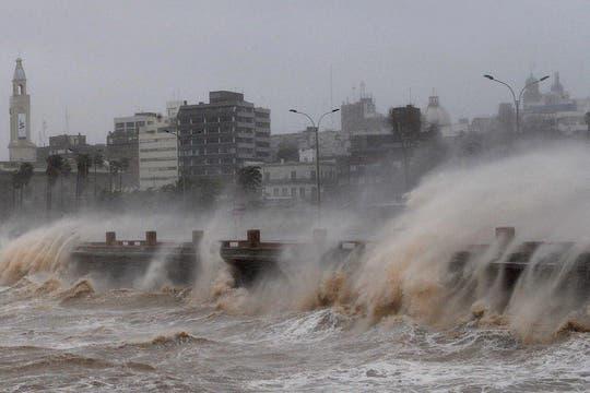 Una violenta tormenta azota el sur de Uruguay provocando graves destrozos. Foto: AFP