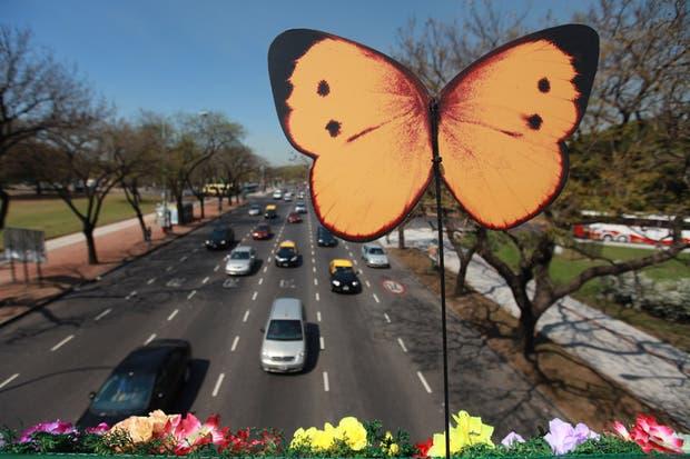 En la ciudad de Buenos Aires, la primavera arranca este fin de semana con sol y frío