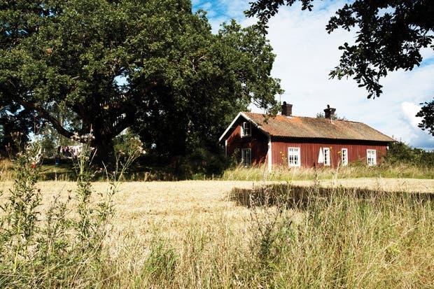 """""""Cuidamos mucho la estructura original de madera: era casi una obsesión generar el confort necesario manteniendo la casa intacta""""."""