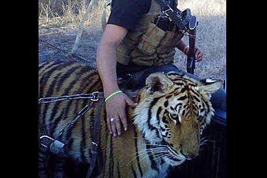 Fotografía tomada de la página de Facebook de Serafín Zambada, detenido el pasado 20 de noviembre por agentes de la Drug Enforcement Administration.. Foto: Facebook