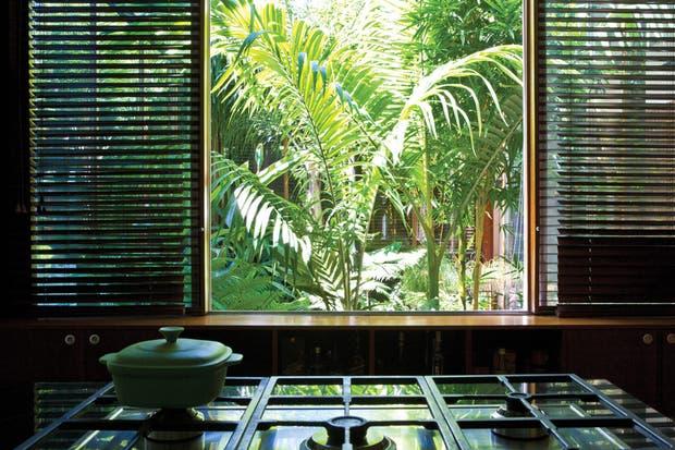 El patio interior diseñado por el paisajista Daniel Mamani, desde el que se asoman las plantas..