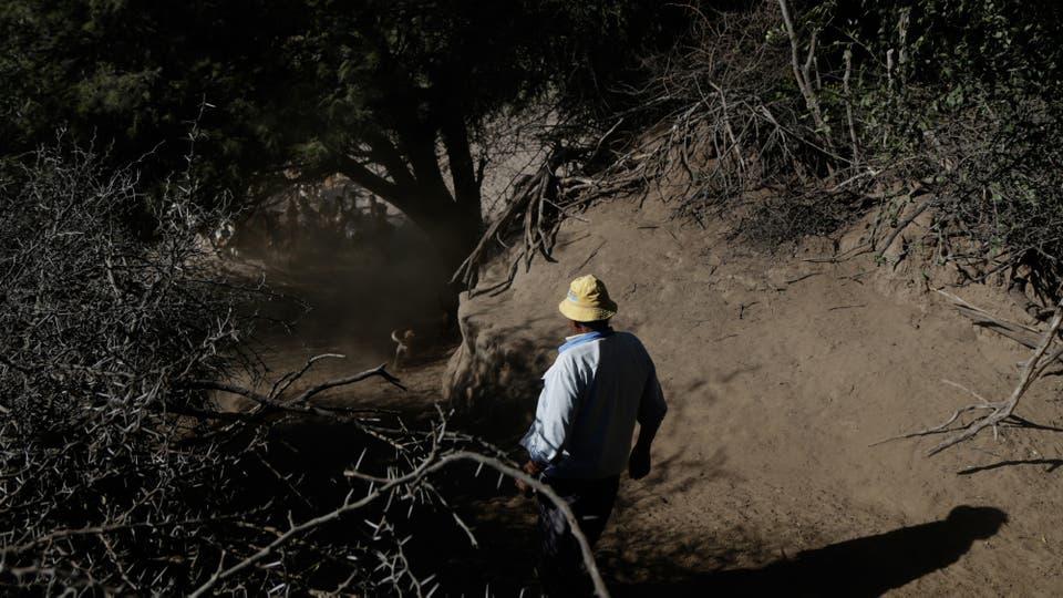 Todos sobreviven como pueden, si gas de red, escasa agua potable, luz muy costosa, sólo hay un teléfono fijo y no hay señal de celular ni internet. Foto: LA NACION / Diego Lima
