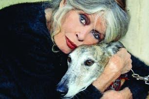 Para la portada de Ohmydog! de noviembre la entrevistó Isabel de Estrada, quien preside la Fundación Zorba, dedicada a promover la adopción de perros víctimas del maltrato y las carreras clandestinas.