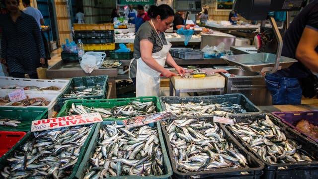 El Mercado Dolac tiene un espacio donde se puede comprar diferentes variedades de pescado fresco. También hay un sector de venta de carnes, pastas y quesos, en el subsuelo; y una zona con flores y plantas