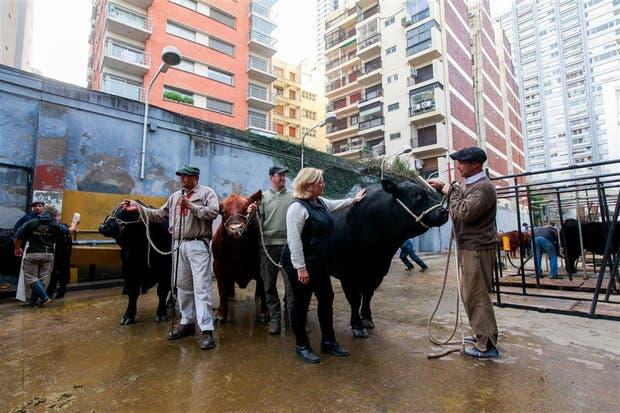 Edgar García, de cabaña El Porvenir, Fabián Torres, de cabaña La Paz, y Mónica Schmale, de la cabaña Don Federico