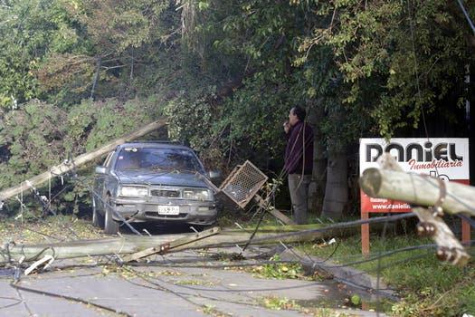 En Castelar también hubo caída de árboles y otros destrozos.