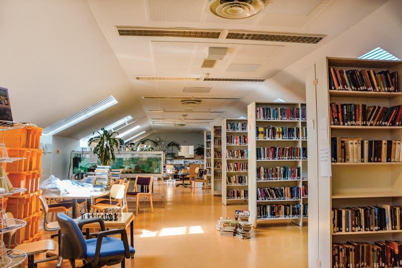 La biblioteca es un lujo: espaciosa, iluminada y con los libros perfectamente clasificados