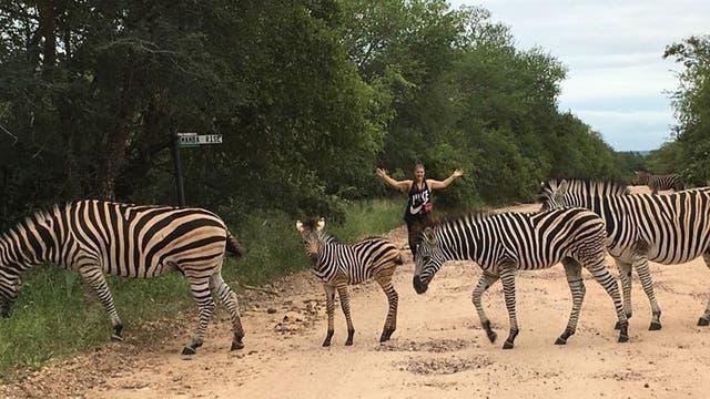 Sudáfrica: un paseo por el lado salvaje