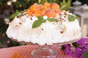 Torta de damasco y crema mouselline