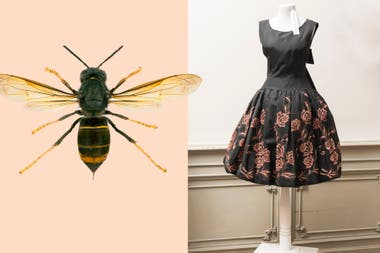 La cintura New Look, años 50, simula la de una avispa