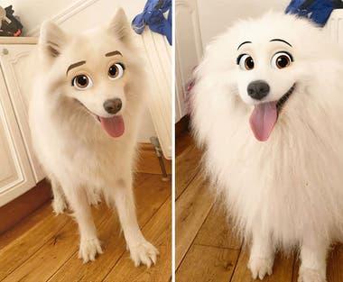 Una entusiasta de los perros estuvo entre las primeras en popularizar el filtro