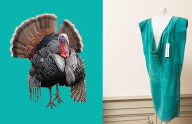 Del buche de un pavo al escote de un vestido