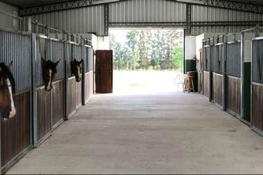 La empresa tambien fabrica boxes para caballos, entre otras instalaciones para el campo