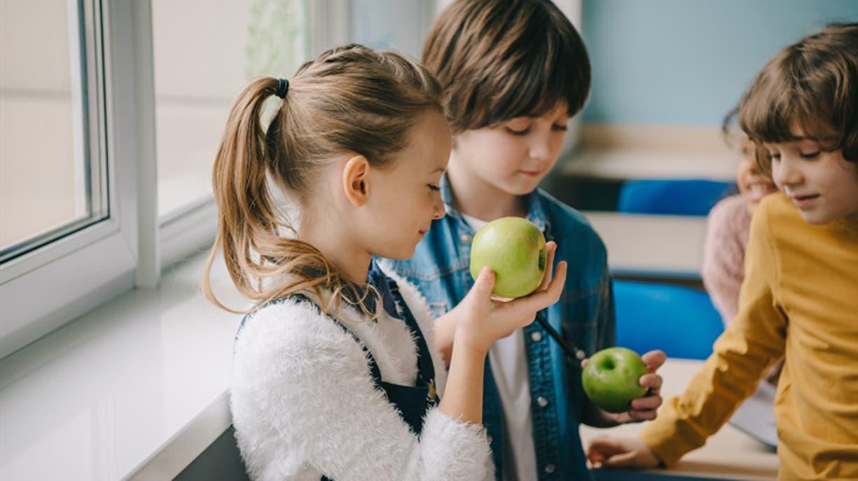 Cereales, frutas frescas y secas, yogures y jugos naturales ya forman parte de la rutina de los chicos