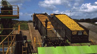 """El proyecto fue atacado por el productor rival de jugo TicoFrut, quien afirmó que se estaba """"contaminando"""" un parque nacional y contaminando la tierra."""