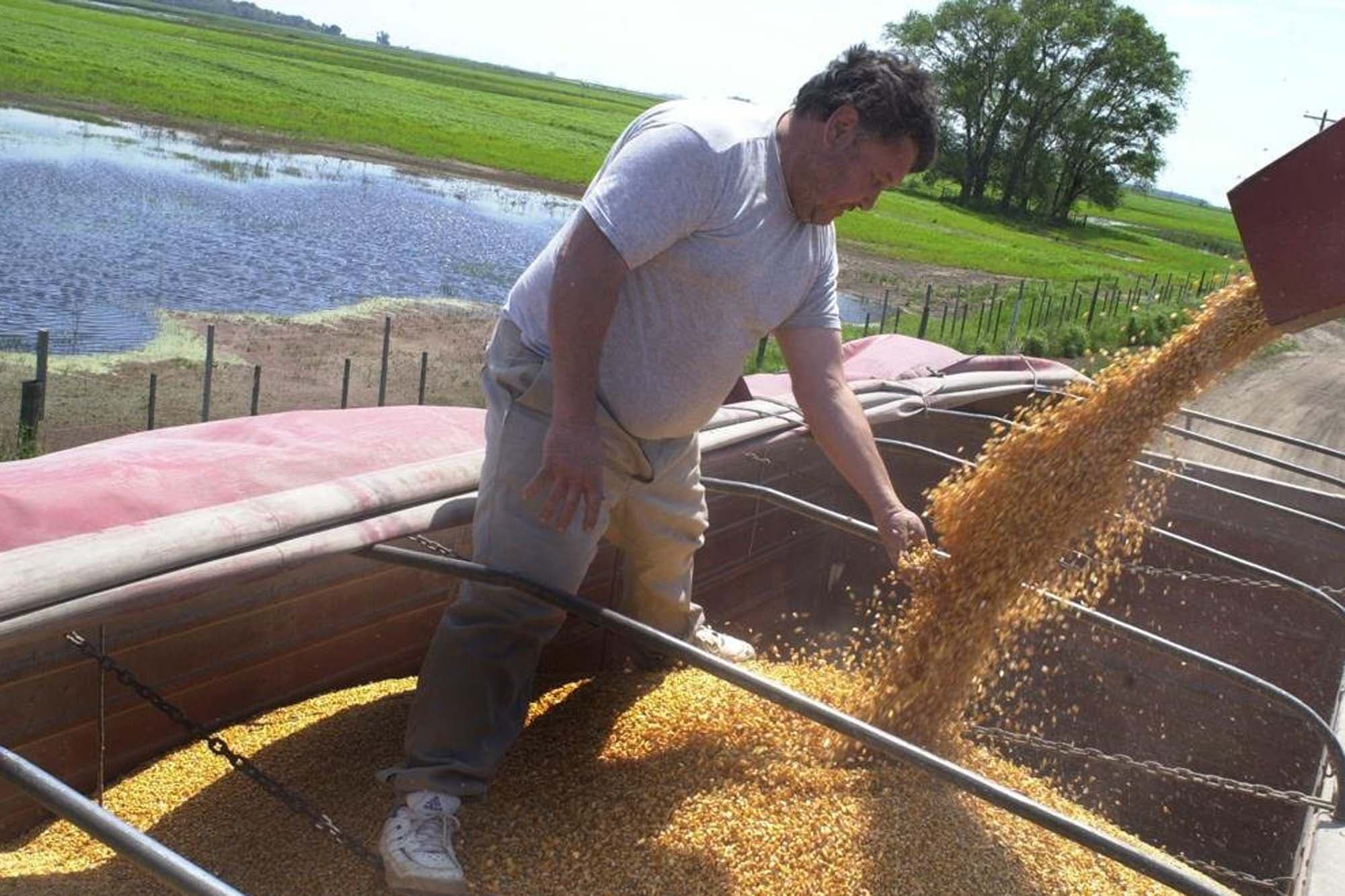 ChemChina y Sinochem consolidan negocios agrícolas y nace Grupo Syngenta