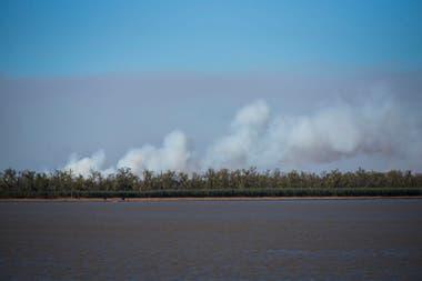 Los incendios en las islas del Paraná destruyeron casi tres veces la superficie de la Ciudad de Buenos Aires