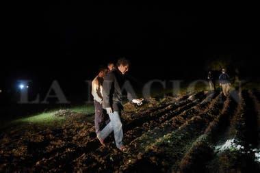 La huerta que hicieron los militantes del Proyecto Artigas en el campo de la familia Etchevehere