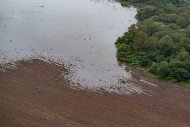 Con los desmontes, son cada vez más frecuentes las inundaciones en el norte y el litoral cada verano