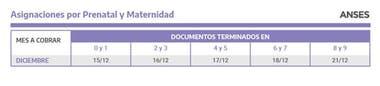 Calendario de pagos de las asignaciones prenatales y de maternidad