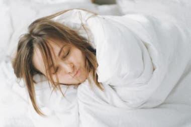El empleo soñado de muchos: pasar el tiempo envuelto en un acolchado para descansar bien abrigado