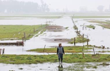 """En Bolívar, luego de la inundación, pasaron a un período de sequía extrema. """"Lo llovido fue secado a fuego fuerte"""""""