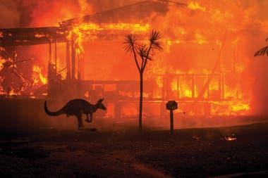 Eventos meteorológicos extremos, como los incendios en Australia, han aumentado su frecuencia y magnitud
