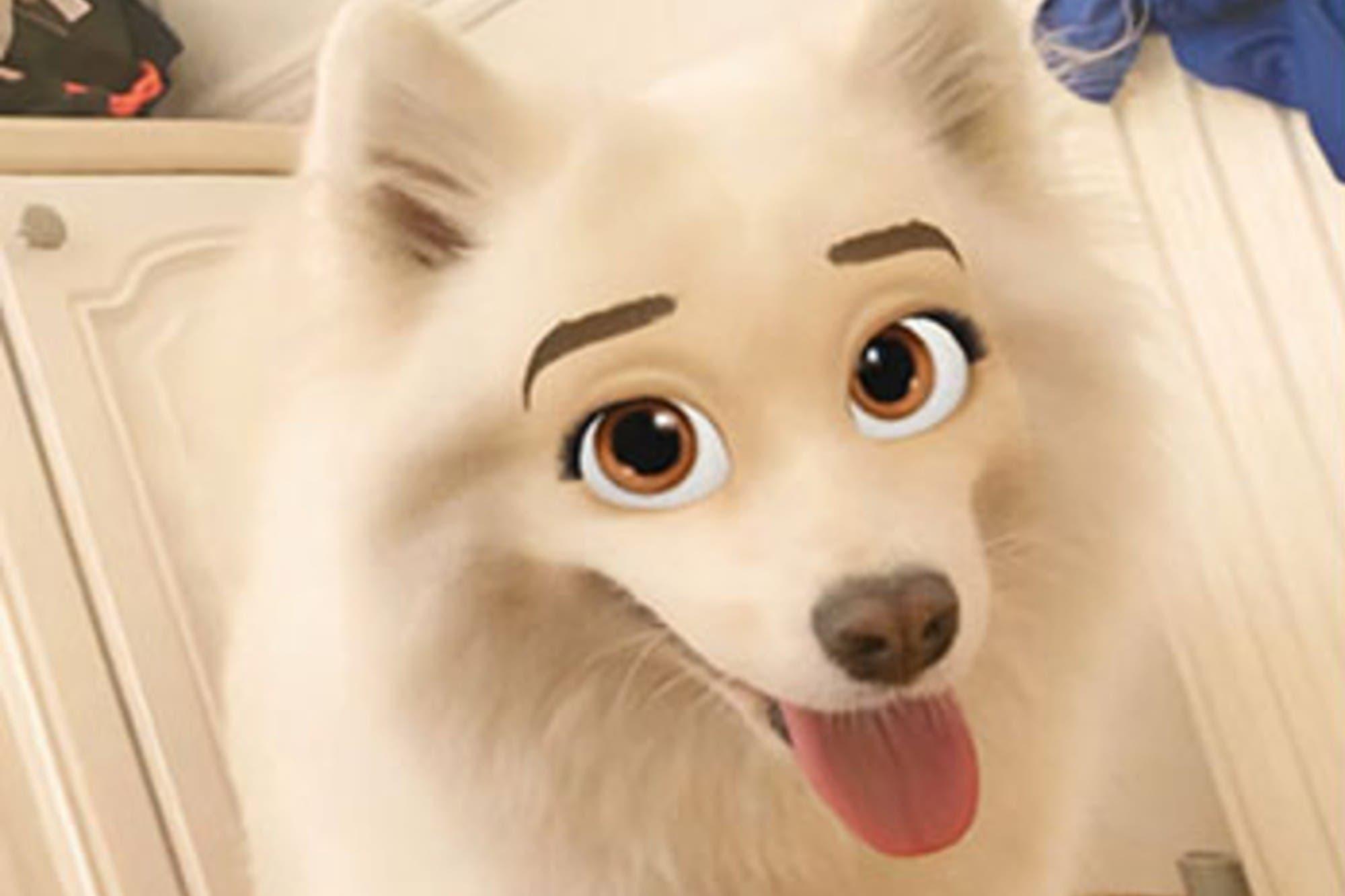 """Snapchat: furor por el filtro que """"convierte"""" a los perros en personajes animados"""
