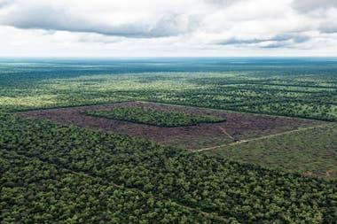 El avance de la frontera agropecuaria sobre los bosques nativos demanda un mayor cumplimiento de la ley de bosques que protege esos ecosistemas
