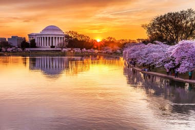 Cuenca Tidal con vista al monumento a Jefferson, Washington D.C.