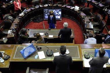 Antropóloga y referente de los derechos humanos en Salta, Alcira Figueroa realizó su jura como diputada en reemplazo de Juan Ameri
