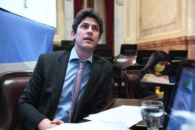 Martín Lousteau, en el Senado de la Nación