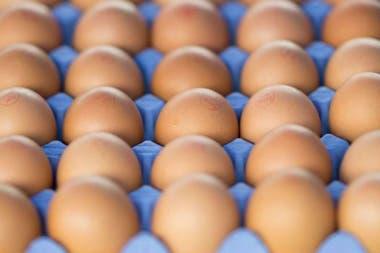 Existen numerosas contradicciones en cómo afectan los huevos a la salud