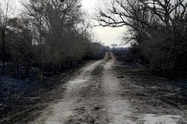 No queda nada después de los incendios