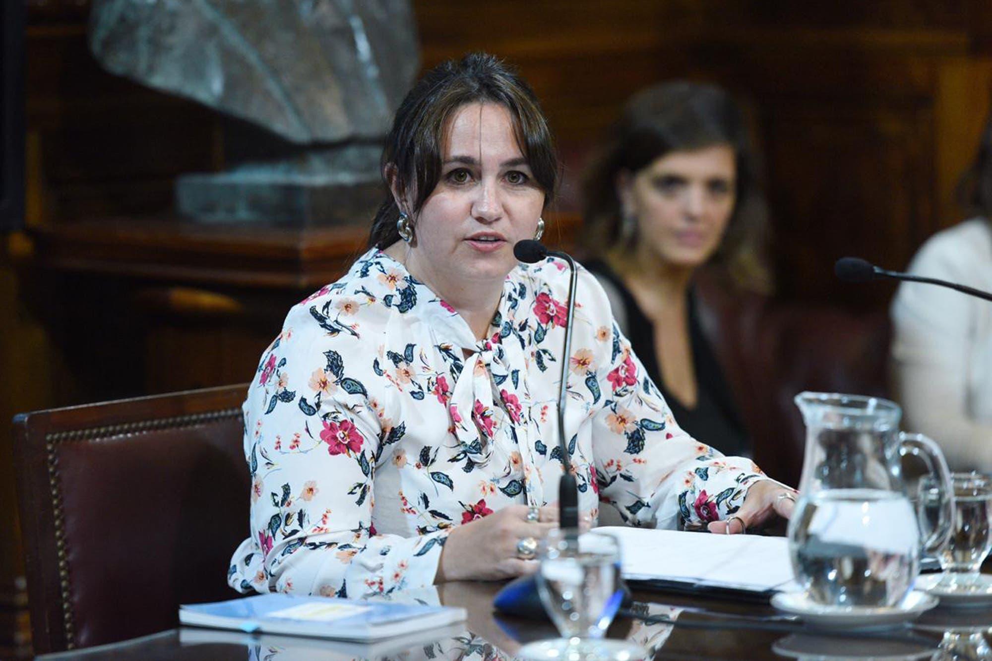 """Una de las firmantes defendió el proyecto de la polémica: """"No afecta la libertad de expresión"""""""