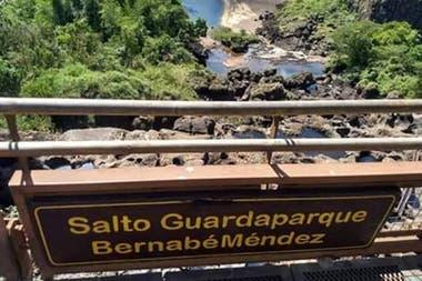 """""""Son ciclos que se dan cada 10 o 15 años"""", explicó Sergio Acosta, intendente del Parque Nacional Iguazú"""