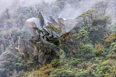 """De la serie """"Topografías de la fragilidad"""" de Ingrid Weyland, una de las artistas elogiadas por la prensa británica"""