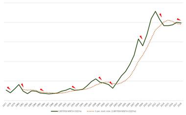 La evolución de los precios de la cartera mixta en los últimos 40 años