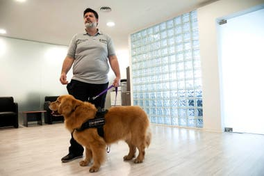 Carlos Agudo, el entrenador de Brownie y Titán, los guía en su labor y explica que el entrenamiento de los perros es cognitivo-emocional