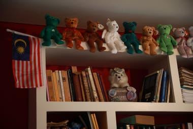 Hernán Tamargo colecciona peluches desde que era chico. Ya tiene una colección con cientos de ellos