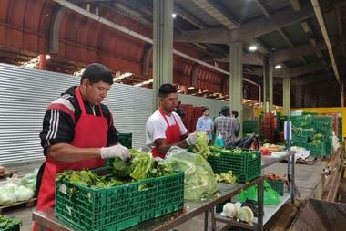 Las donaciones se clasifican según el tipo de comida y las necesidades del comedor