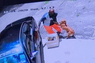 Su dueño estaba a punto de abandonarla junto a sus cachorros, y la perra saltó sobre él para rogarle que no la deje en la calle