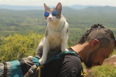 John y Bella criatura, el gato que lo acompaña en su gira por América: ya recorrieron juntos cinco países, antes de la pandemia de coronavirus