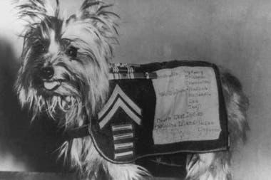Smoke tenía una manta donde constaban todos los reconocimientos que recibió por sus acciones en la Segunda Guerra