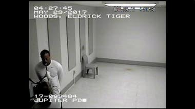Tiger, esposado, es sometido a estudios en el departamento de policía de Jupiter, en Florida