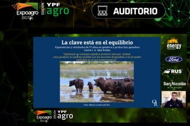 """Carlos Ojeda Rullan: """"Un criador eficiente es aquel capaz de producir la mayor cantidad de carne sana con la mejor calidad en el tiempo"""""""