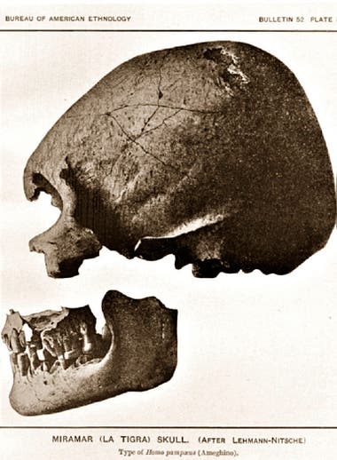 """El cráneo que dio origen a la teoría del """"Hombre fósil de Miramar"""" fue hallado por el recolector de huesos Andrés Canesa en el arroyo La Tigra en 1888, en Mar del Sud"""