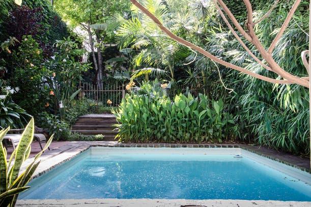 Revista jard n la nacion for Modelos de jardines en casa