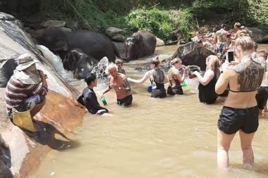 Un día en la Reserva de Elephant Jungle Sanctuary en Chaing Mai de Tailandia
